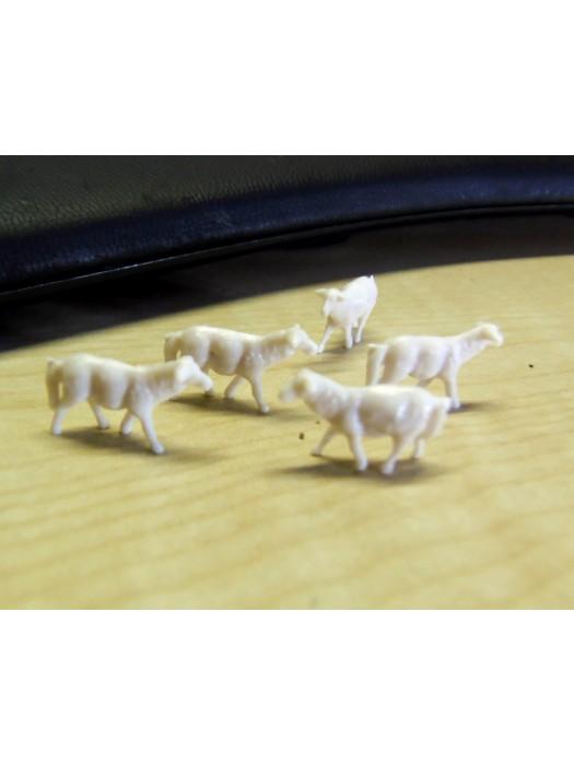 10 schapen (H0)